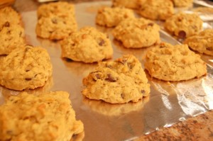 pumpkin-chocolate-chip-cookies-done-1024x680